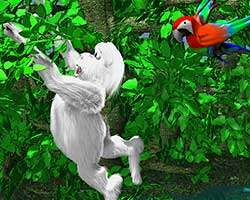 Click to Play Yeti Sports 8 - Jungle Swing