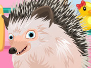 Click to Play Cute Hedgehog