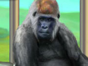 Click to Play My Funny Ape