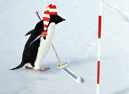 Click to Play Penguin with Bow Golf